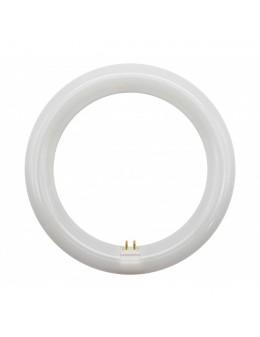 TUBO CIRCULAR LED 22CM 15W