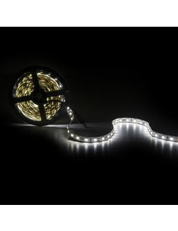 TIRA LED 14,4W/M IP25 BLANCA